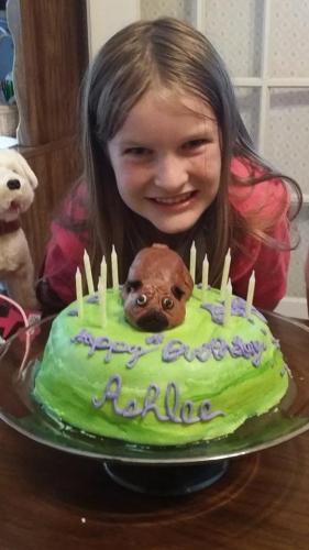 tiny pug cake